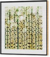 Aspen Colorado Abstract Square 3 Wood Print