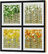 Aspen Colorado Abstract Square 4 In 1 Collection Wood Print