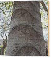 Aspen Eye Wood Print