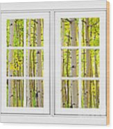 Aspen Forest White Picture Window Frame View Wood Print