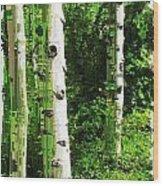 Aspen Grove 2 Wood Print