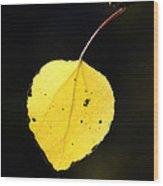 Aspen Leaf  In Fall Wood Print