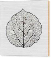 Aspen Leaf Skeleton 1 Wood Print