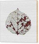 Aspen Leaf Skeleton 2 Wood Print