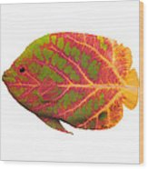 Aspen Leaf Tropical Fish 1 Wood Print