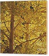 Aspen Leaves Textured Wood Print