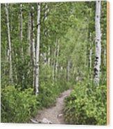Aspen Path Wood Print