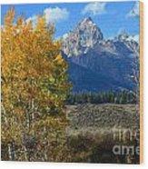 Aspen Peaks Wood Print
