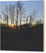 Aspen Prairie Sunset Wood Print