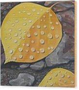 Aspen Rain Wood Print