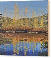 Aspen Song Wood Print