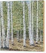 Aspen South Saddle Blue Mtn 24 X 48 Wood Print