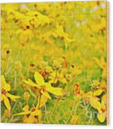 Aspen Sunflower Wood Print