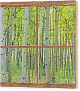 Aspen Tree Forest Autumn Picture Window Frame View  Wood Print
