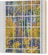 Aspen Tree Magic Cottonwood Pass White Window Portrait View Wood Print by James BO  Insogna