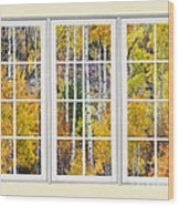 Aspen Tree Magic Cream Picture Window View 3 Wood Print by James BO  Insogna