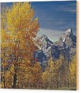 1m9353-aspens In Autumn And The Teton Range - V Wood Print