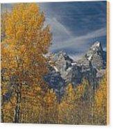 1m9352-aspens In Autumn And The Teton Range Wood Print
