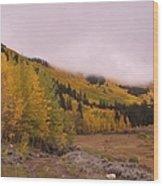 Aspens In The Mist Wood Print
