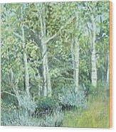 Aspens Of Medicine Bow Wood Print by Terri Ana Stokes