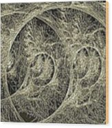 Aspergilloma Wood Print