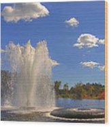 Aspetuck Reservoir Wood Print by Joann Vitali