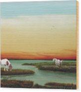 Assateague Island Sunset Wood Print