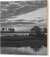 Assateague Salt Marsh Bw Wood Print