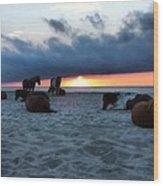 Assateague Sunrise Wood Print