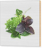 Assorted Basil Herbs Wood Print