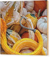 Assorted Gourds Wood Print