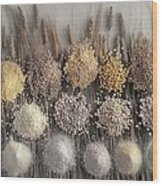Assorted Grains And Flour Wood Print