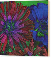 Asters Wood Print