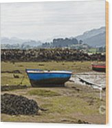 Asturias Seascape With Boats Wood Print
