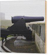 At Fort Trumbull Wood Print