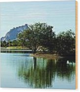 At Fountain Park - View At Red Rock Wood Print