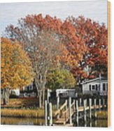 At Home On The Harbor Wood Print