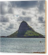 At Mokoli'i's Summit Wood Print