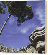At Parc Guell In Barcelona - Spain Wood Print