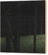 At Play In Darkened Woods Wood Print