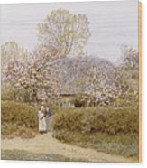 At School Green Isle Of Wight Wood Print