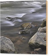 At The Banias River 3 Wood Print