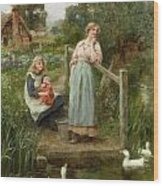At The Duck Pond Wood Print