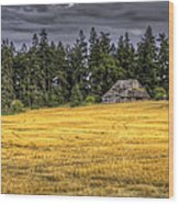 At The Edge Of The Field Wood Print