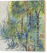 At The Edge Of The Woods Wood Print
