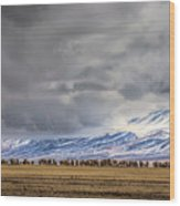 At The Foot Of The Tianshan Mountains Wood Print