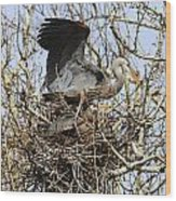At The Heronry Wood Print