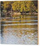 At The Lake-34 Wood Print