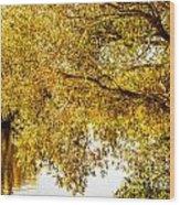 At The Lake -37 Wood Print