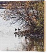 At The Lake-38 Wood Print